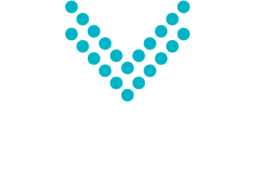 Visioneer Consulting